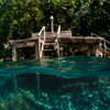 Uepi Island Resort's welcome jetty is a great spot for snorkelling.