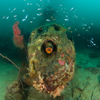 The intact wreck of a WWII P38 Lightning is a great shallow dive in just 5 metres of water.